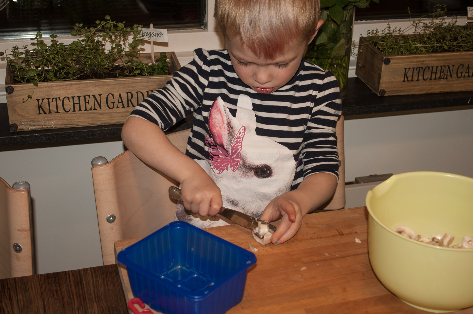 Boy cutting champignon